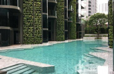 Pet friendly in Bangkok - Ashton Residence 41