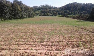 N/A Land for sale in Mae Taeng, Chiang Mai