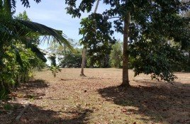 N/A Property for sale in Khao Mai Kaeo, Trang Land For Sale Tung Tong Beach
