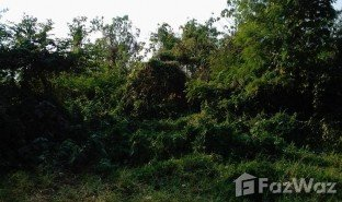 N/A Land for sale in Kut Pong, Loei