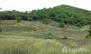 N/A Land for sale in Pa Tueng, Chiang Rai