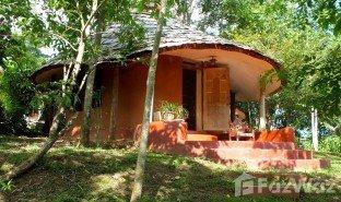 недвижимость, 4 спальни на продажу в Чианг Дао, Чианг Маи