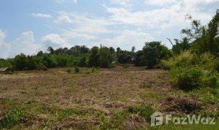 N/A Grundstück zu verkaufen in Tha Khao Plueak, Chiang Rai