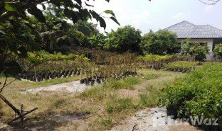N/A Land for sale in Nong Yaeng, Chiang Mai