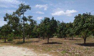 N/A Land for sale in Na Ta Khwan, Rayong