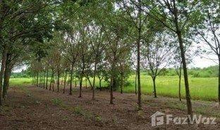 N/A Immobilie zu verkaufen in Nam Chan, Bueng Kan