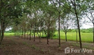 N/A Immobilier a vendre à Nam Chan, Bueng Kan