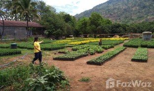 N/A Land for sale in Nong Bua, Loei