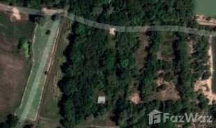 N/A Land for sale in Nok Mueang, Surin