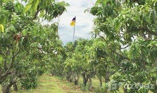 N/A Immobilie zu verkaufen in Ban Noi Sum Khi Lek, Phitsanulok