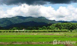 N/A Grundstück zu verkaufen in Pong Phrae, Chiang Rai