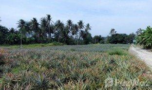 N/A Land for sale in Pran Buri, Hua Hin