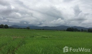 N/A Property for sale in Luang Nuea, Chiang Mai