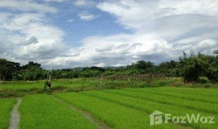 N/A Property for sale in Nong Han, Chiang Mai