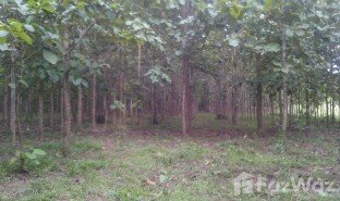 N/A Land for sale in Nong Phue, Loei
