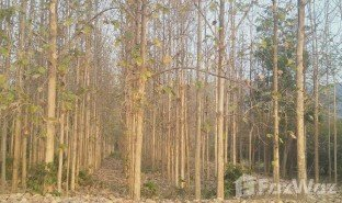 N/A Land for sale in Bo Rang, Phetchabun