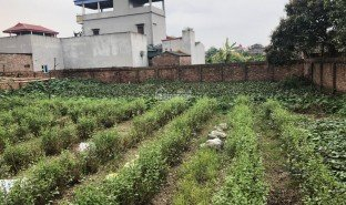 N/A Land for sale in Xuan Non, Hanoi