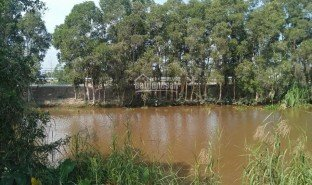 N/A Property for sale in Phuoc Lap, Tien Giang