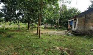 N/A Property for sale in Nhuan Trach, Hoa Binh