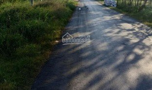 N/A Property for sale in Binh an, Tien Giang