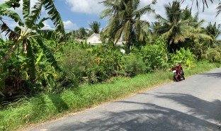 N/A Property for sale in Luong Hoa Lac, Tien Giang
