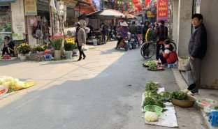 N/A Property for sale in An Khanh, Hanoi