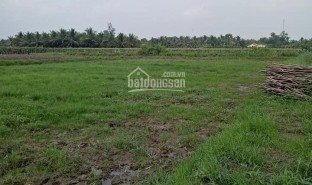 N/A Property for sale in Tan Huong, Tien Giang