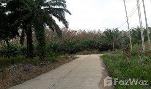 N/A Terrain a vendre à Thung Luang, Chumphon