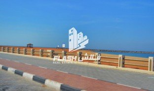 N/A Land for sale in Manama, Ajman