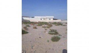N/A Land for sale in Nad Al Hamar, Dubai