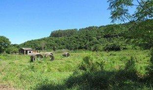 N/A Land for sale in Pega Fogo, Rio Grande do Sul