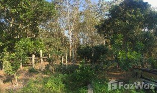 N/A Land for sale in Pa Sang, Chiang Rai