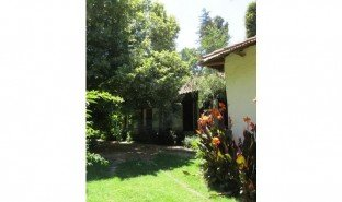 12 Habitaciones Propiedad e Inmueble en venta en Requinao, Libertador General Bernardo O'Higgins