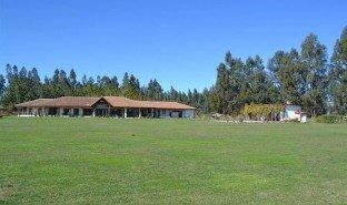 3 Habitaciones Propiedad e Inmueble en venta en Santa Cruz, Libertador General Bernardo O'Higgins