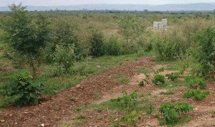 N/A Land for sale in , Greater Accra