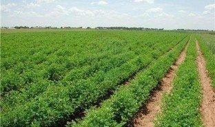 N/A Land for sale in Bhopal, Madhya Pradesh