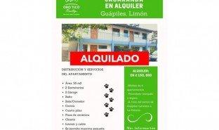 2 Habitaciones Propiedad e Inmueble en venta en , Limón Guápiles
