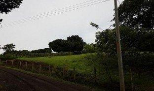 N/A Immobilier a vendre à , Alajuela