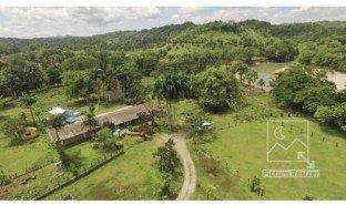 4 Habitaciones Propiedad e Inmueble en venta en , Santiago Rodriguez