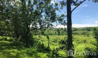 N/A Property for sale in Lo Yung, Phangnga